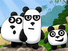 3 Panda