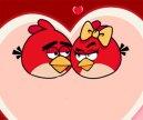 Aşık Angry Birdsler