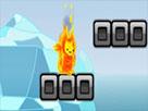 Ateş Kedisi