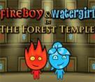 Ateş ve Su Orman Tapınağı