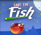 Balık Koruma