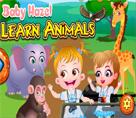 Bebek Hazel Hayvanları Öğren