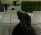 Çılgın FPS 3d