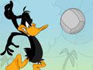 Daffy Voleybol