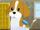 Dora Köpek Bakımı