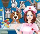 Evcil Hayvan Hastanesi