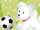 İki Kişilik Hayvan Futbolu
