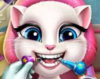 Kitty Diş Tedavisi