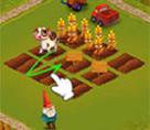 Köy Çiftliği Yönet