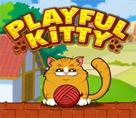 Oyunbaz Kedi