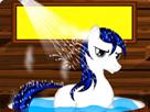 Sevimli Pony Kışlık Bakımda