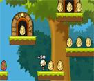 Yumurta Avcısı